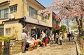 Path of phylosophy in kyoto april tourists visit philosophy on april japan it is a pedestrian that follows a cherry tree lined Royalty Free Stock Photos