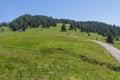 Path through rural mountain landscape in summer near walderalm austria tirol Royalty Free Stock Images