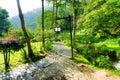 Path In Santa Rosa De Cabal