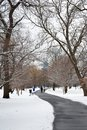 Path Through The Snow On A Gray Day Royalty Free Stock Photo