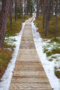 Path in snowy forest wooden last snow Stock Images