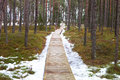 Path in snowy forest wooden last snow Stock Photo