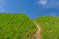 Path to blue heaven Royalty Free Stock Photo