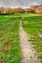 Path to forest through green meadow leading autumn Royalty Free Stock Image