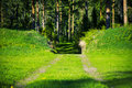 Path to forest pathway dark between green hills Royalty Free Stock Photo