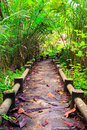Path to the jungle trang thailand southern of Stock Photos