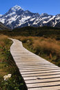 Path to Mt Cook Royalty Free Stock Photo
