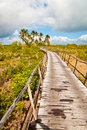 The path to the romantic bungalows resort Royalty Free Stock Photography