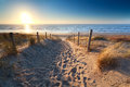 Path to sand beach in North sea Royalty Free Stock Photo