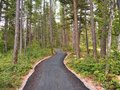 Path to the Village From West Glacier RV Park and Cabins Royalty Free Stock Photo