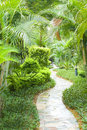 Path in tropical garden Royalty Free Stock Photo