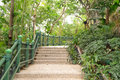 Path in tropical jungle hong kong Stock Photo