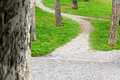 Path way with trees and green meadow Royalty Free Stock Photo