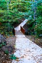 Path Into Woods Royalty Free Stock Photo