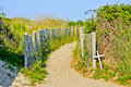 Paths along the beach beaches of nc Stock Photo