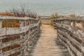 Pathway for Access to Beach at First Landing State Park Royalty Free Stock Photo