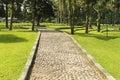 Pathway in the botanical garden,bali