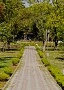 A pathway in a garden Royalty Free Stock Photo