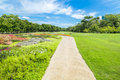 Pathway in green grass field in big city park Royalty Free Stock Photo