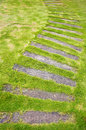 Pathway in the lawn stone block Royalty Free Stock Images
