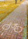 Pathway on park bike pavement in with beautiful yellow flowers Royalty Free Stock Photos