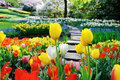 Pathway in spring park path surrounded by multicolor flowers Royalty Free Stock Photography