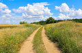 Pathway in steppe rut road summer Royalty Free Stock Photos