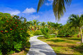 Pathway in tropical park Stock Photo