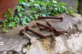Patio still life archaic rusty nails extracted from an old bed waiting for future use maybe Royalty Free Stock Photo