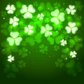 Patrick day green background with clovers