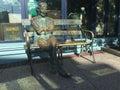 Patrick Kavanagh bronze statue. Raglan Road, Disney Springs Royalty Free Stock Photo