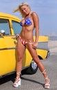 Patriotic Bikini Babe