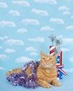 Patriotic tabby cat Royalty Free Stock Photo