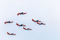 Patrulla aguila cadiz spain sep aircrafts of the taking part in a test on the nd airshow of cadiz on sep in cadiz spain Royalty Free Stock Photo