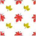 Pattern Autumn Leaf Fall Maple and Leaf