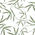 Pattern with bamboo leaves for best print
