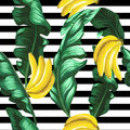 Pattern of bananas and green leaves on a striped background. Tropical background.