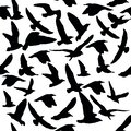Pattern of bird elements. Figure silhouette ravens black and white. Suitable for printing on textiles, dresses, leggings, t-shirts Royalty Free Stock Photo