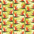 Pattern with Bird of paradise flower - tropical plan Royalty Free Stock Photo
