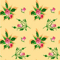 Pattern from bouquets of roses. Stock Photography