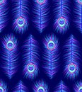 Pattern with colorful peacock feathers Royalty Free Stock Photo