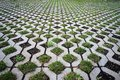Concrete tiles and grass pattern. Royalty Free Stock Photo