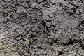 Pattern of cracks in dried mud Royalty Free Stock Photo
