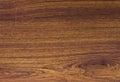 Pattern detail of teak wood texture