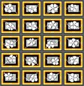 Pattern with flowers and frames Royalty Free Stock Photography
