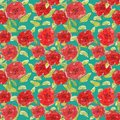 Pattern flowers red poppies illustration leaves branches buds print clothes textile background Wallpaper scrapbooking vintage
