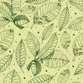 Pattern with freehand coffee leafs Royalty Free Stock Photography