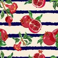 Pattern with fruits of pomegranate on striped background Vector illustration. Royalty Free Stock Photo