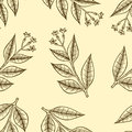 Pattern herbs and flowers
