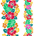 Pattern of the hibiscus i drew for a design this painting continues repeatedly it is a vector work Stock Images